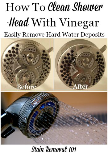 How to clean a shower head with vinegar to remove hard water deposits {on Stain Removal 101}