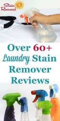Laundry Stain Removers Reviews