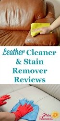 Leather Cleaners & Stain Removers Reviews
