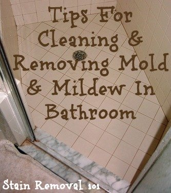 Cleaning and removing mold mildew in bathroom - How to clean black mold in bathroom ...