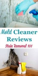 Mold Cleaners & Removers