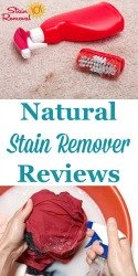 Natural Stain Remover Reviews