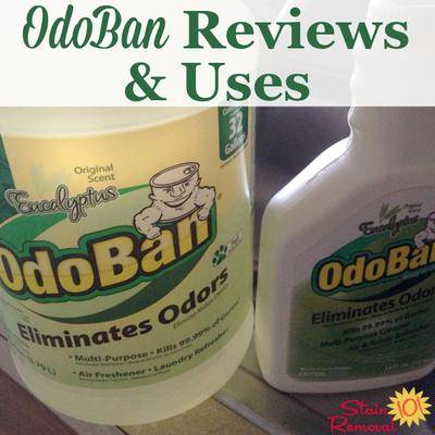 Odoban Reviews Uses For Lots Of Household Surfaces