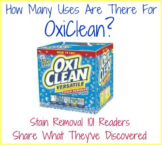 "Oxiclean calls itself the ""versatile stain remover"" so I've been having lots of fun finding uses around the home for this product."