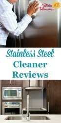 Stainless Steel Cleaners Reviews