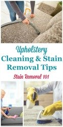 Upholstery Cleaning Tips