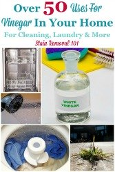 Over 50 Uses For Vinegar For Your Home And Tips For Cleaning With It